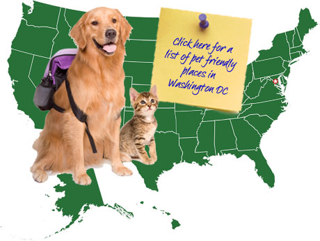 Washington DC Pet Friendly Map